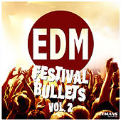 EDM Festival Bullets, Vol. 2 by Various Artists