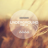 Underground Top 14 by Various Artists