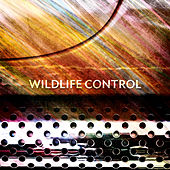 Wildlife Control by Wildlife Control