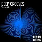 Deep Grooves - EP by Various Artists