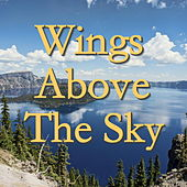 Wings Above The Sky by Various Artists