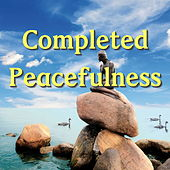 Completed Peacefulness by Various Artists