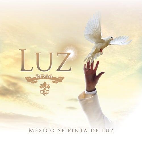 Luz by Lemongrass