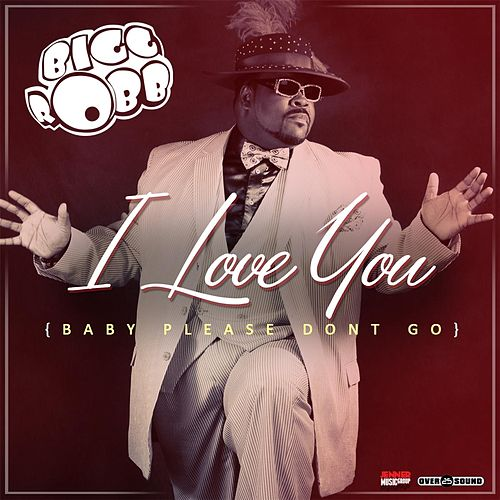 I Love You (Baby Please Don't Go) by Bigg Robb