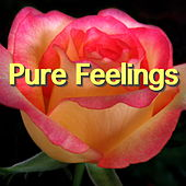 Pure Feelings by Various Artists