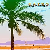 Caribbean Steeldrum Music by Caiso Steelband