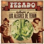 Tributo A Los Alegres De Terán by Pesado