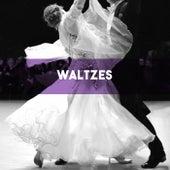 Waltzes von Various Artists