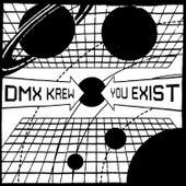You Exist by DMX Krew