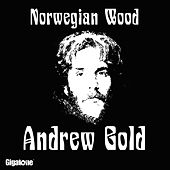 Norwegian Wood (This Bird Has Flown) by Andrew Gold