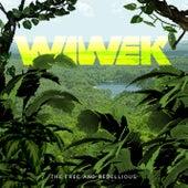 Rebels (feat. Audio Bullys) by Wiwek