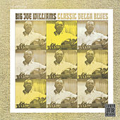 Classic Delta Blues by Big Joe Williams