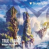 True Trance: Mixed By Luke Terry - EP by Various Artists