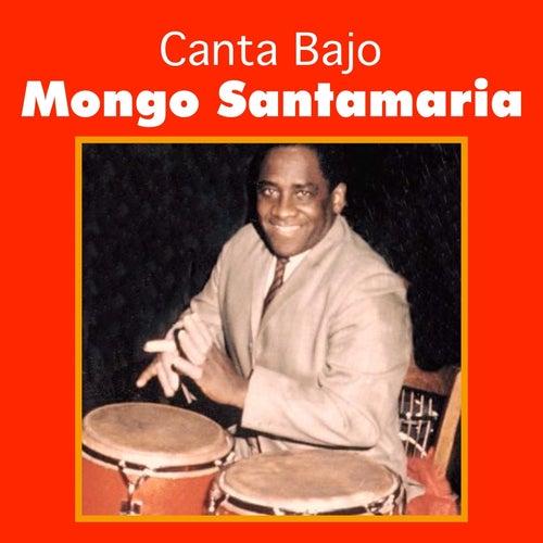 Canta Bajo by Mongo Santamaria