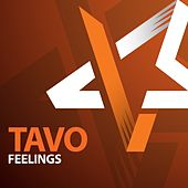 Feelings by TAVO