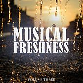 Musical Freshness, Vol. 3 (Awesome Selection Of Groovy Dance Music) by Various Artists