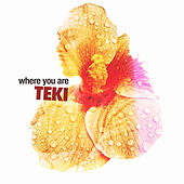 Where You Are by Teki