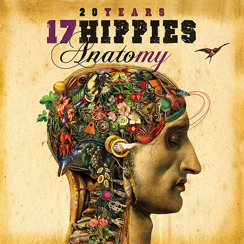 20 Years 17 Hippies - Anatomy by 17 Hippies
