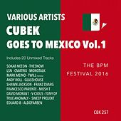Cubek Goes To Mexico, Vol. 1 (The BPM Festival 2016) - EP by Various Artists