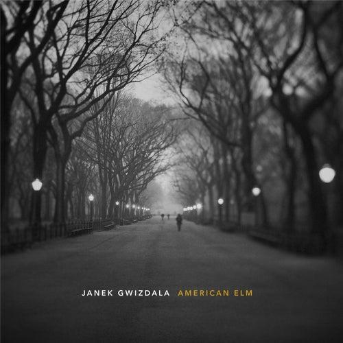 American Elm by Janek Gwizdala