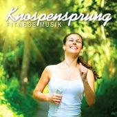 Knospensprung Fitness Musik by Various Artists