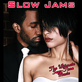 Slow Jams von Various Artists