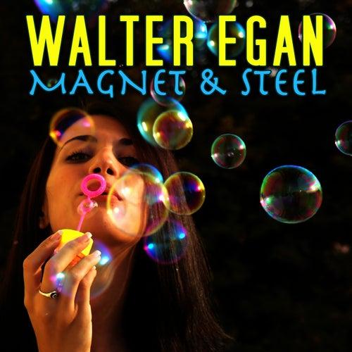 Magnet & Steel by Walter Egan