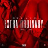 Extra Ordinary feat.Taye Diggas, Joel by Spradley