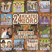 Tesoros De Mexico 24 Kilates De Oro by Various Artists