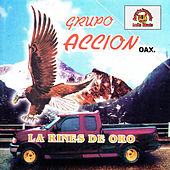 La Rines De Oro by Grupo Accion Oaxaca