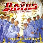 Pasito De Los Rayos by Los Rayos De Oaxaca