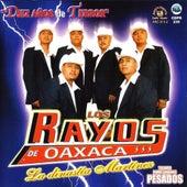 Diez Anos De Terror by Los Rayos De Oaxaca