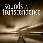 Sounds of Transcendence by Various Artists