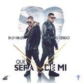Qué Será de Mi by Baby Rasta & Gringo