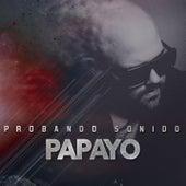 Probando Sonido by Papayo