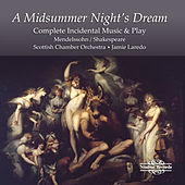A Midsummer Night's Dream by Judith Howarth