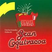 Despierta el Sabor en Esta Navidad by Gran Coquivacoa