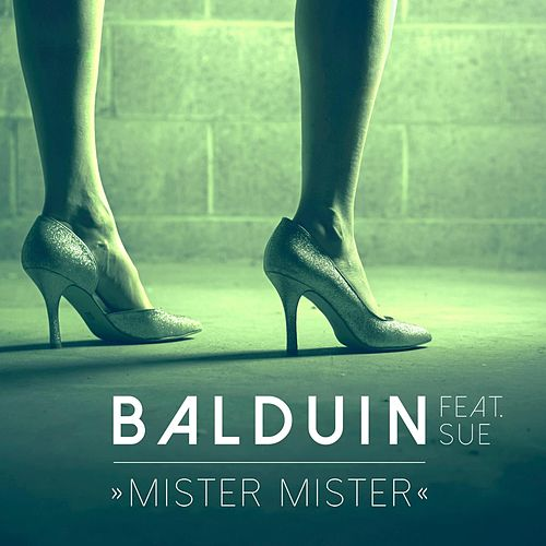 Mister Mister (feat. Sue) by Balduin