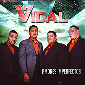Amores Imperfectos by Grupo Vidal
