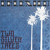 Two Silver Trees by Calexico