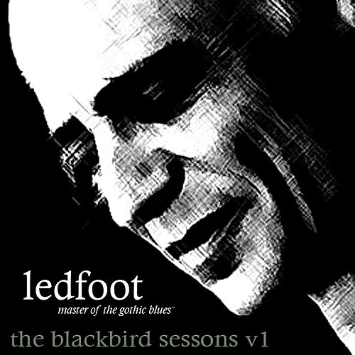 The Blackbird Sessions V1 by Tim Scott