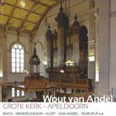 Grote Kerk, Apelddorn by Wout van Andel