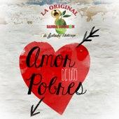 Amor de los Pobres by La Arrolladora Banda El Limon