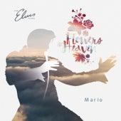 Flowers in Heaven by Mario
