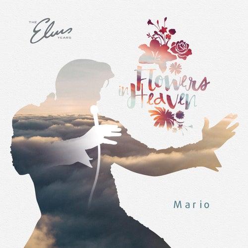 Flowers in Heaven von Mario