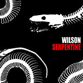 Serpentine by Wilson