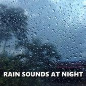 Rain Sounds at Night by Deep Sleep (1)