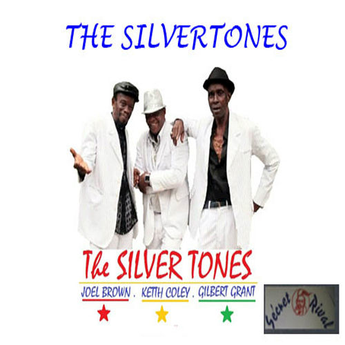 Things Gonna Change by The Silvertones