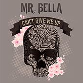 Can't Give Me Up by Mr. Bella