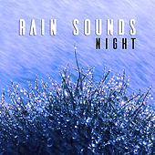 Rain Sounds: Night by Deep Sleep (1)